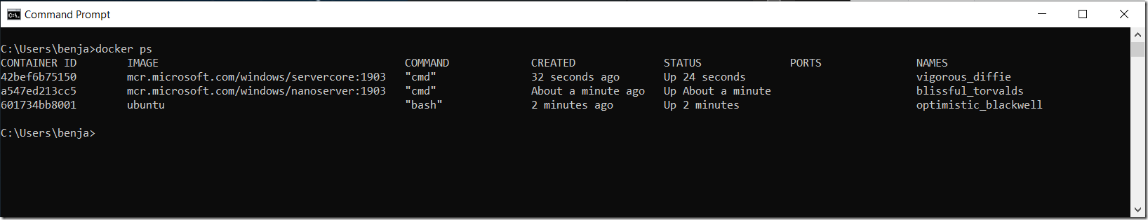 Docker Screenshot